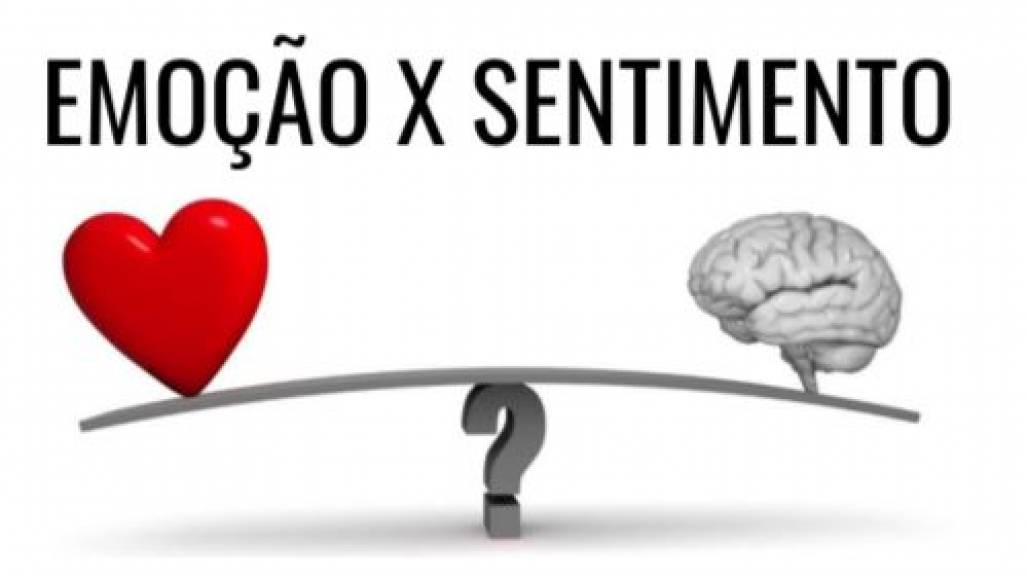 sentimentos (Foto: Reprodução/Pedro Calabrez)