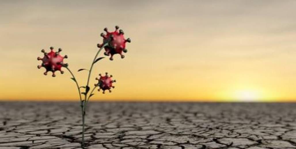 doenças e meio ambiente (Foto: Reprodução/Revista AdNormas )