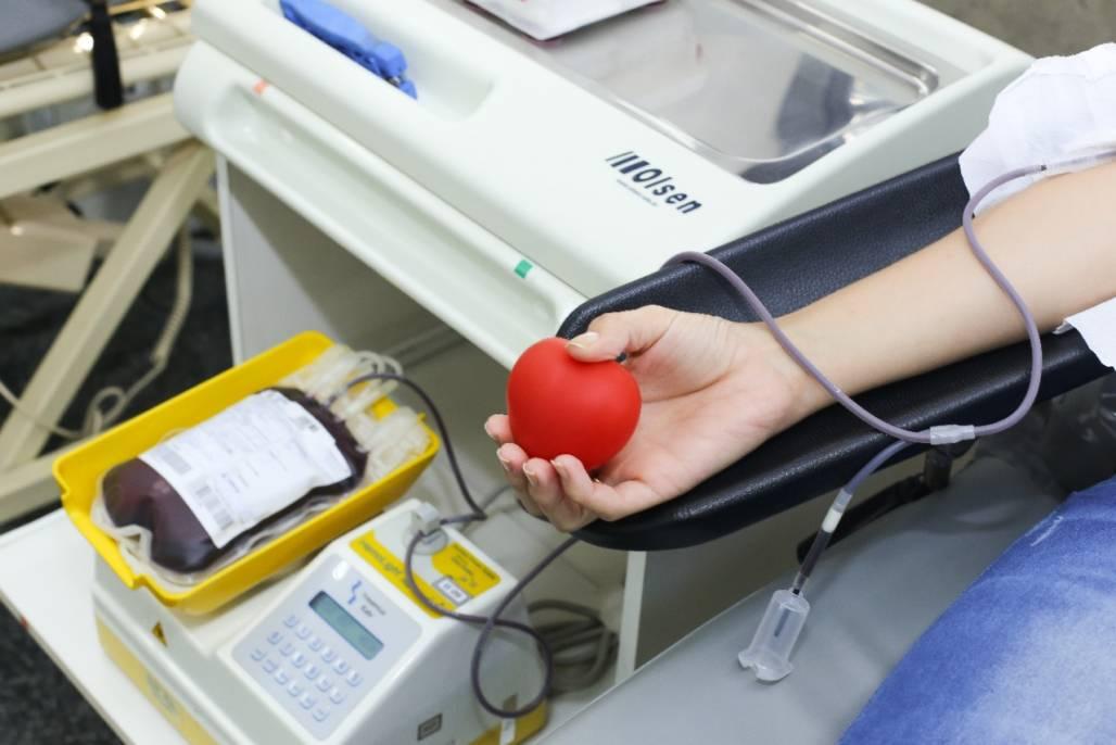 doação de sangue  (Foto: Reprodução)