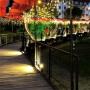 Campos do Jordão inaugura novo parque romântico no Dia dos Namorados
