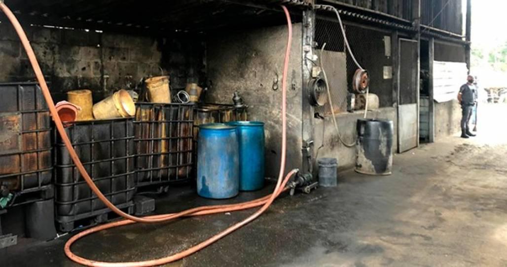 Operação Combustível batizado - Divulgação MP (Divulgação / MP)