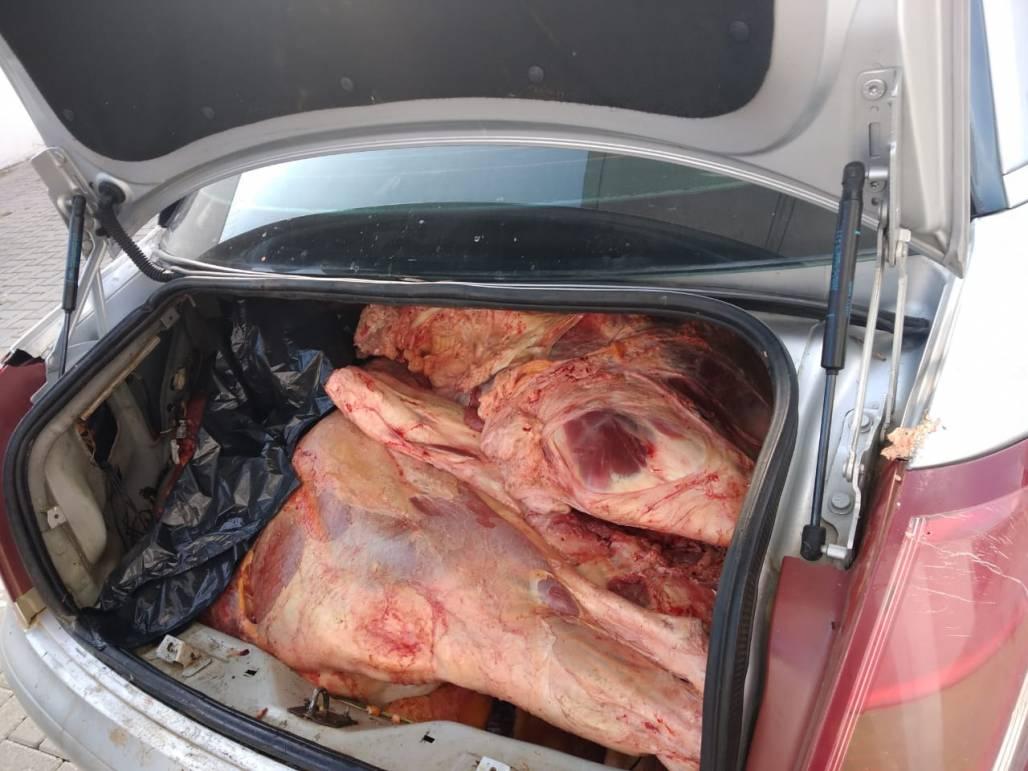 Carnes estragadas em Pinda 1 (Divulgação/Polícia Civil)