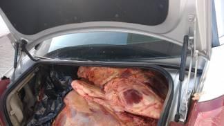 Carnes estragadas em Pinda 1