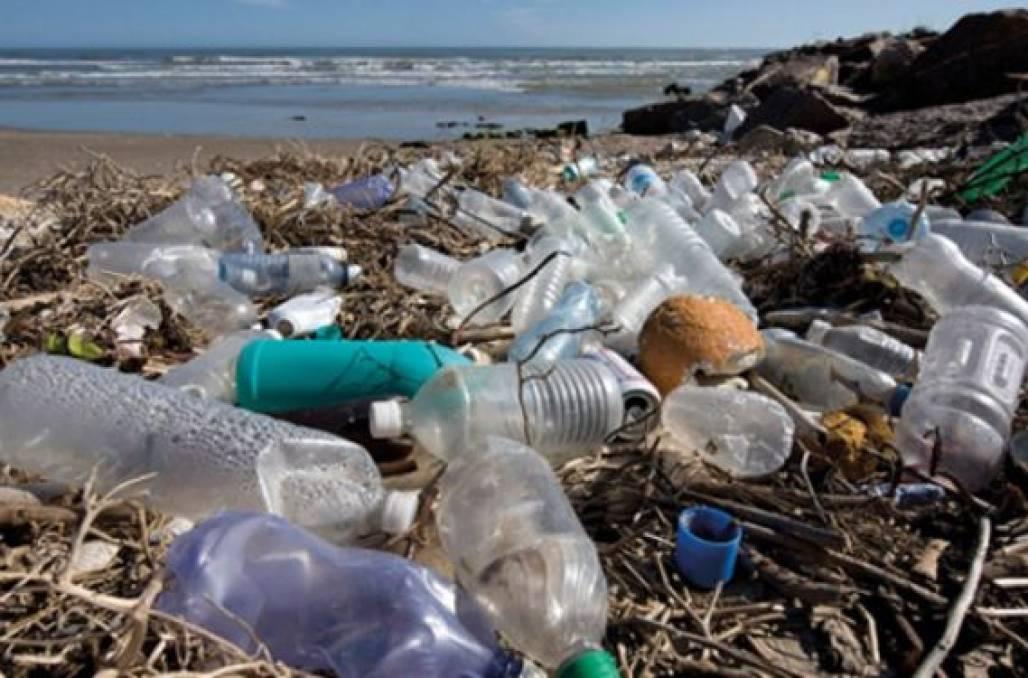 Plástico na praia (Reprodução)